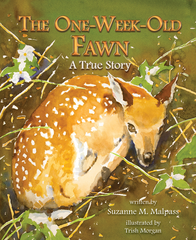 OneWeekOldFawn_Cover