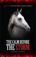 CalmBeforeTheStorm_MBWeb
