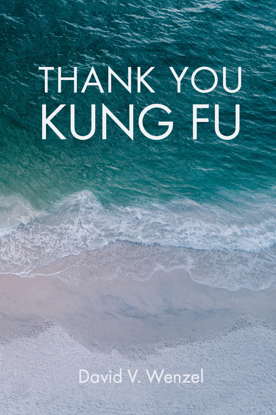 ThankYouKungFu_Amazon