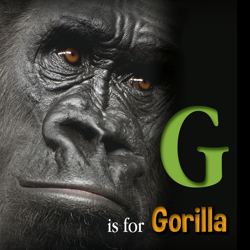 Gorilla_Cover_Web