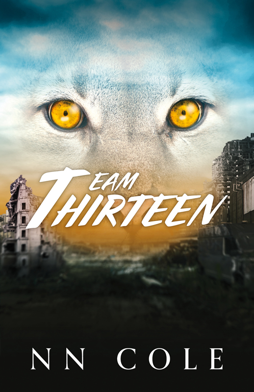 TeamThirteen_Cover_Web