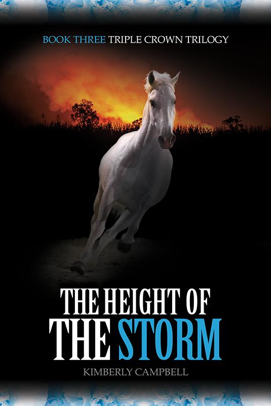 HeightStorm_Cover_Web