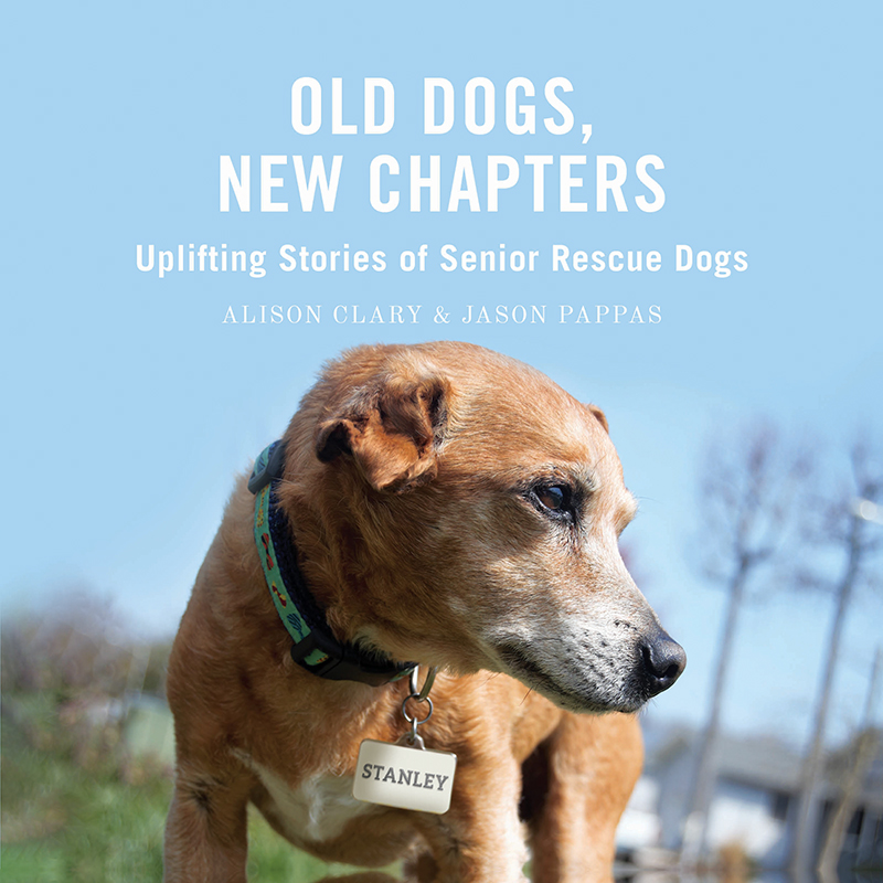 OldDogsNewChapters_Cover_Web
