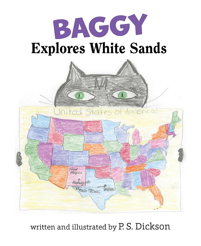 BaggyWS_Cover_Web
